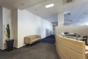 Interior Commercial Building Office Painting